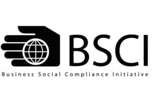 Congratulation for VIGA passed BSCI again!